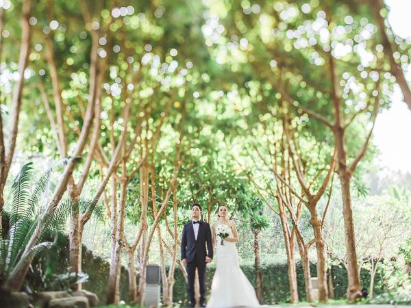 Joyce + Paul Wedding-0003